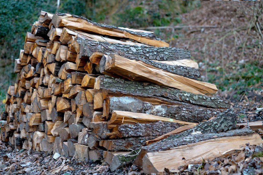 Ігор Лавриненко: Треба забороняти продаж лісу в обхід аукціону